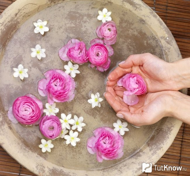 Приготовление Гидролата Роз