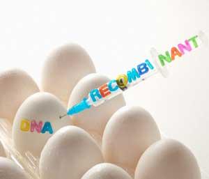 Генетически модифицированная пища
