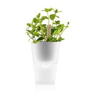 горшок для растений с естественным поливом