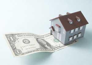 поручительство по кредиту
