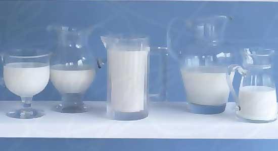 как пить молочный гриб