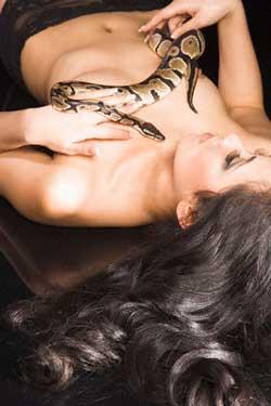 массаж змеями